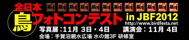ジャパン・バード・フェスティバル